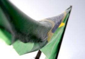 Bandeira do Brasil Congelada (2)